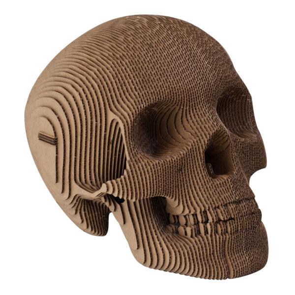 skull_L_B__47885.1379797826.1280.1280